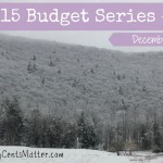 December 2015 Budget