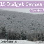 December 2015 Budget Update