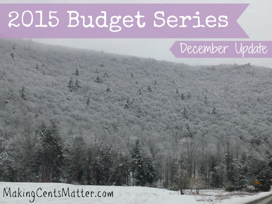 2015 Budget Series Dec Update