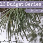 January 2016 Budget Update