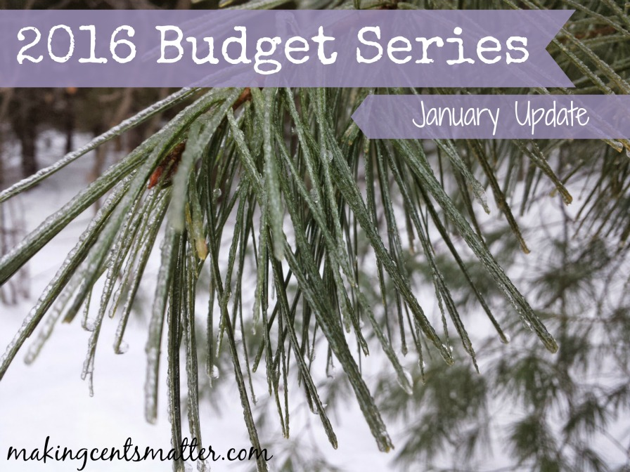 2016 Budget Series Jan Update