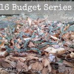 February 2016 Budget