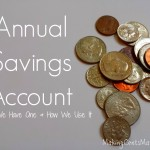 Annual Savings Account: Why We Have One, & How We Use It