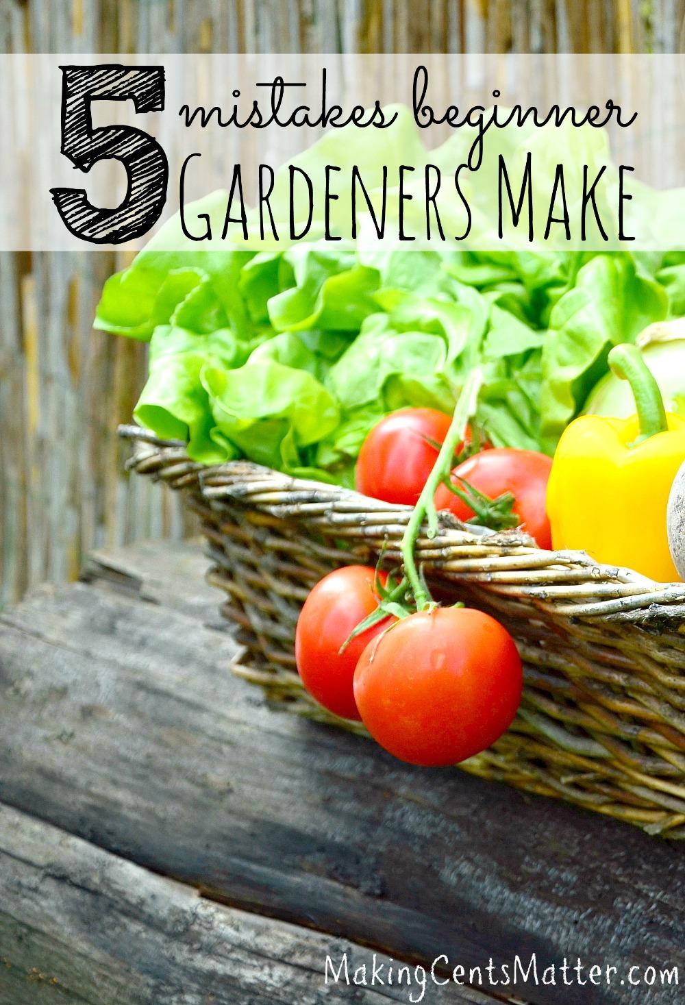 beginner gardener mistakes