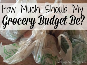 grocery budget 1