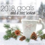2018 Goals, and a 2017 Review