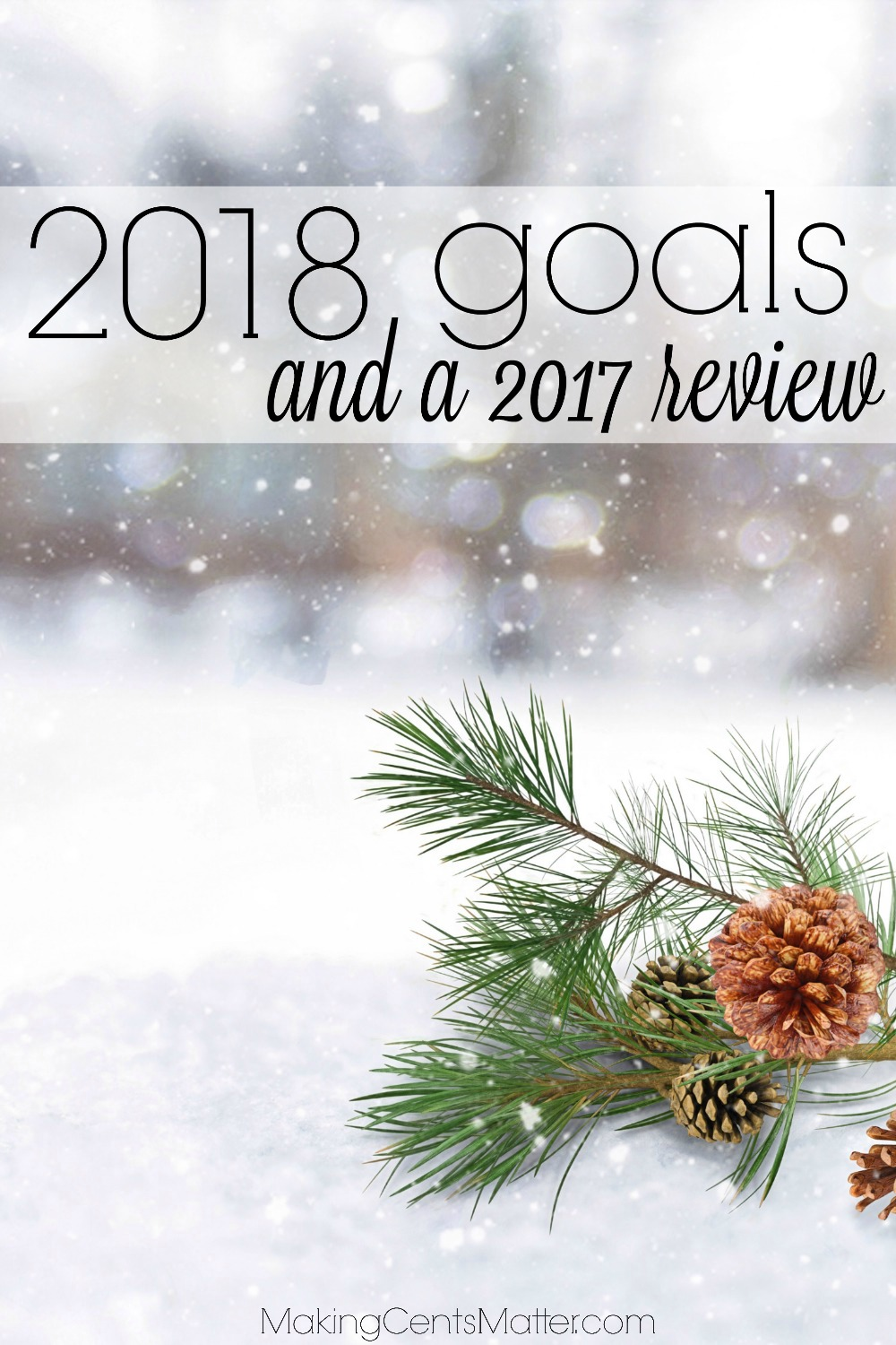 2018 Goals 2017 Review