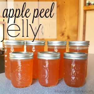 Apple Peel Jelly