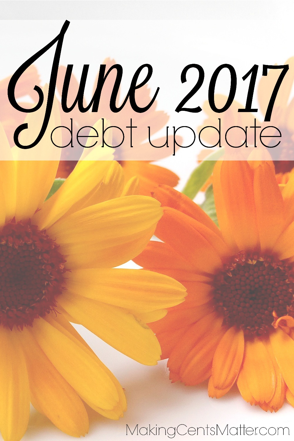 June 2017 Debt Update
