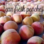 How to Can Fresh Peaches – with tutorial!