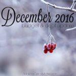 December 2016 Budget & Debt Update