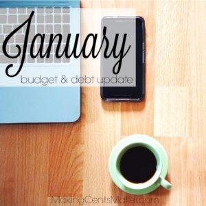 January 2017 Budget Debt Update