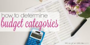 How To Determine Budget Categories