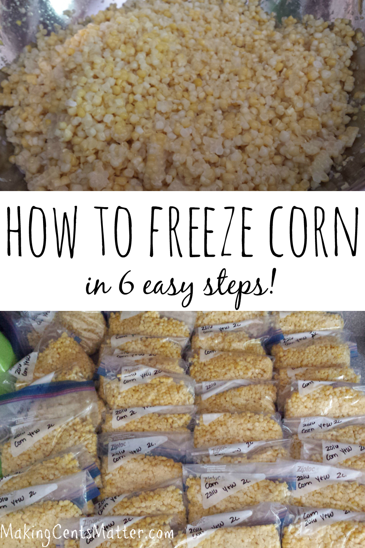freeze corn 6 steps