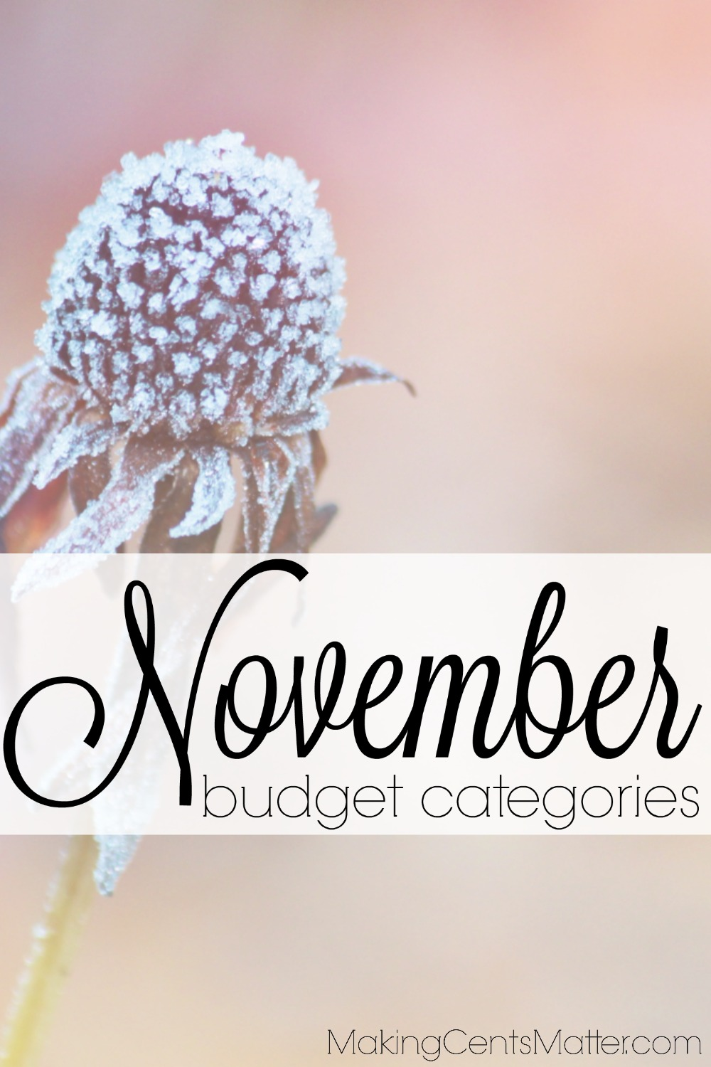 10 categories you forgot about in your November budget.