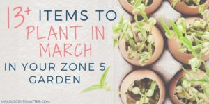 What To Plant In March In Your Zone 5 Garden